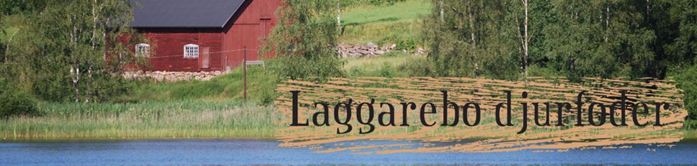 Laggarebo